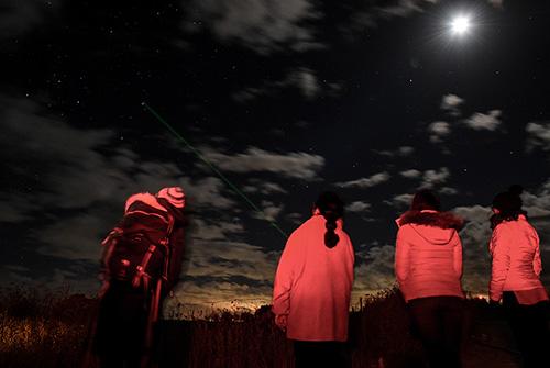 Chile's Rock Art Llamas Divulge Secrets of Ancient DesertCulture